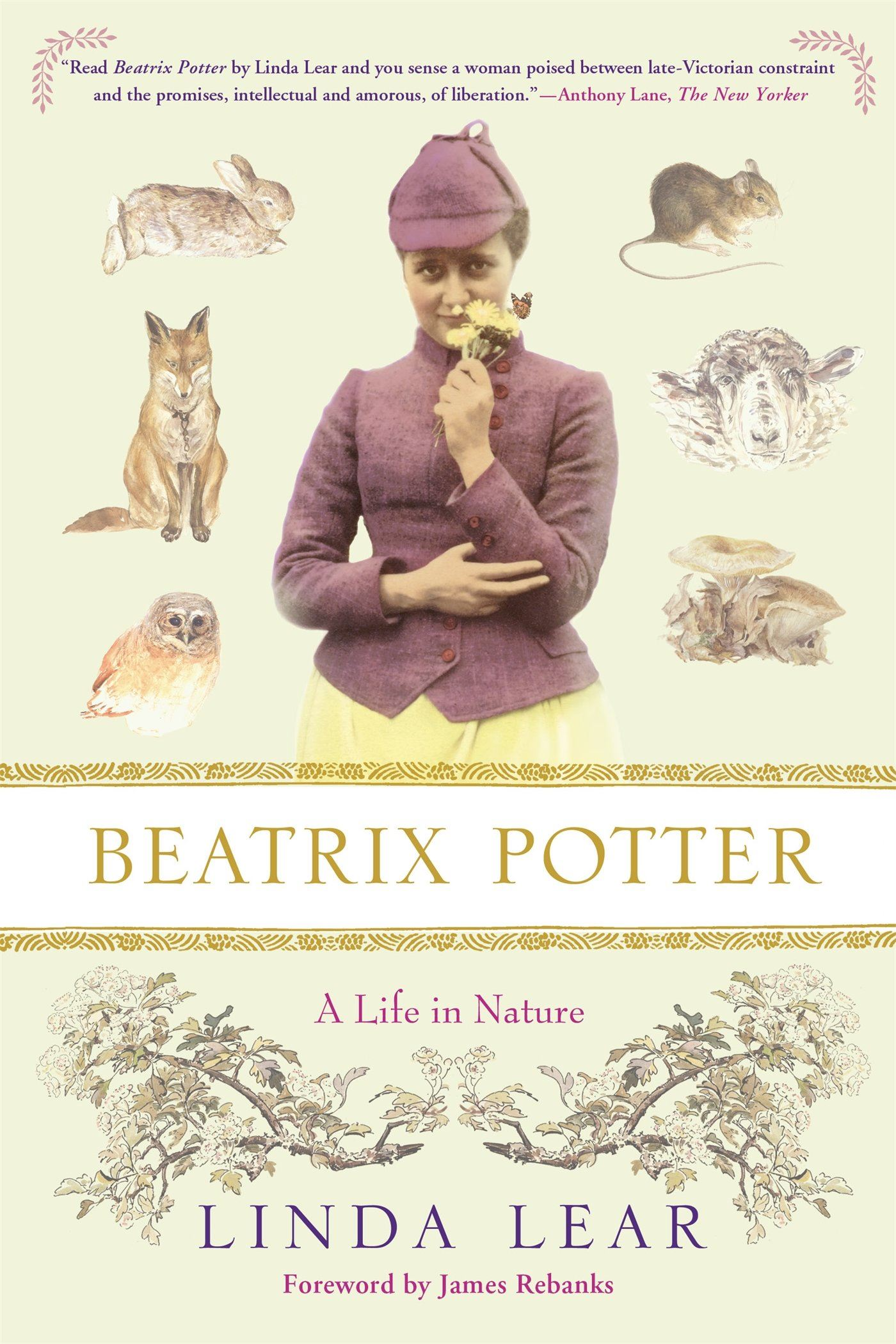 Beatrix Potter Book Cover Image