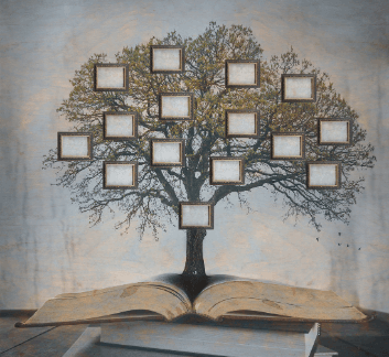 Large tree with frames for family names. tree is sprouted out of books.