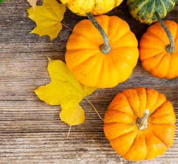 Image of pumpkins and leaves
