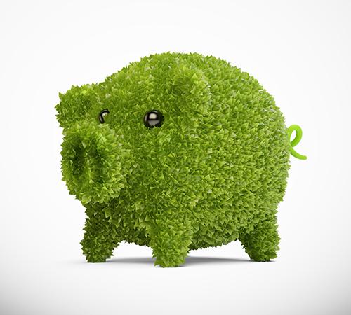 Green pig small.jpg